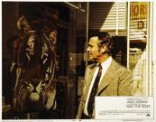 save-the-tiger-jack-lemmon-1973-everett