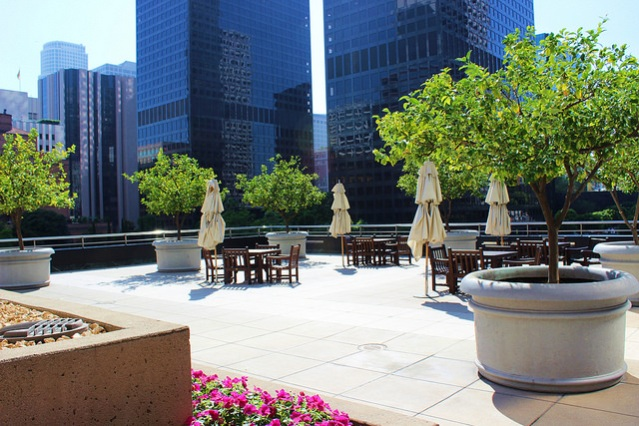 13081782663_936de88270_z the patio at Citi Group Plaza
