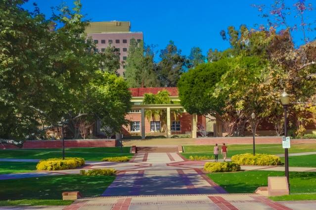 UCLA 387-Edit