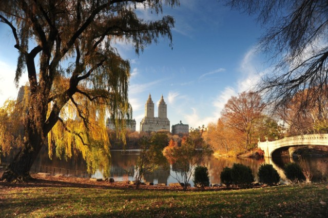 CENTRAL_PARK__Autumn_Landscape_-_Manhattan_New_York_City_-_113010